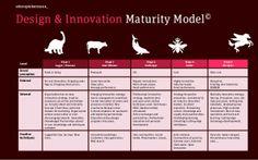 Sterke en innovatieve merkervaringen bouwen