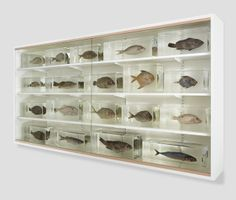 """I Want You Too"""" (1993) by Damien Hirst is displayed at the booth of White Cube gallery at Frieze New York"""