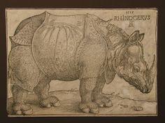 Increíble historia!! Durero nunca vio al rinoceronte. Fue un regalo de un Sultán de la India al Rey Manuel I de Portugal y éste lo exhibió en una lucha contra un elefante. A Durero le llegó una descripción y un boceto del animal y él recreó la imagen (...) en esta xilografía. http://www.bne.es/es/Micrositios/Exposiciones/durero/Exposicion/Seccion4/Obra07.html?origen=galeria http://gozarte.wordpress.com/2011/06/27/cheira-bem-cheira-a-lisboa-ix-un-rinoceronte-muy-muy-viajero/