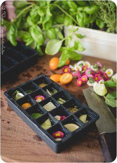 Eiswürfel mit Obst, Blumen und Kräutern Kalimba, Cocktails, Drinks, Kraut, Ice Cube Trays, Sorbet, Parfait, Foodblogger, Summer Vibes