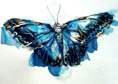 "A Blue Morpho. India and Winsor-Newton colored inks. 8""x10""."