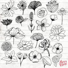 Flowers Clipart - 23 Hand Drawn Floral Cliparts - Realistic Floral Logo Art - Flower Logo Elements - Flower vector - Grab yourself some adorable hand drawn Realistic Flower clipart, perfect for Logos, invitations, bi Logo Floral, Flower Logo, Flower Art, Flower Ideas, Flower Mandala, Flower Girls, Lotus Flower, Flowers Tatto, Flowers Draw