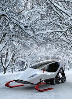 Luxury snowmobile...