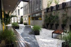 Vertiz 950, Mexico City, 2013