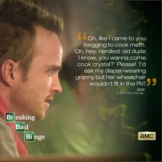 Breaking Bad Quotes.