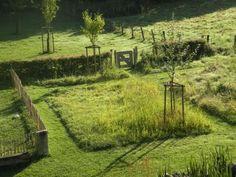 Landscape Architecture, Landscape Design, Garden Design, Meadow Garden, Dream Garden, Landscape Engineer, Urban Nature, Australian Garden, Natural Garden