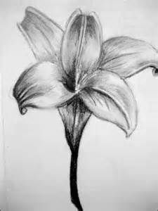 Flower Designs Drawings - Bing Images