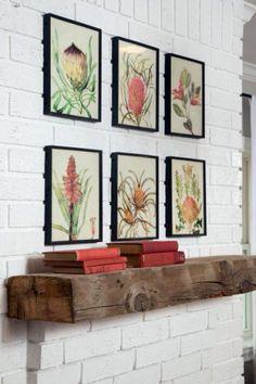 I am really into + Vintage + Botanical Prints + exotics + framed + easy diy