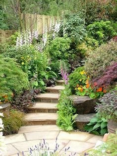 Notice how close to the boundary fence this path and garden are - shows what can be done in a small space! This was at a Chelsea garden show. Hillside Garden, Sloped Garden, Garden Paths, Garden Show, Dream Garden, Garden Yard Ideas, Garden Landscaping, Patio Ideas, Back Gardens