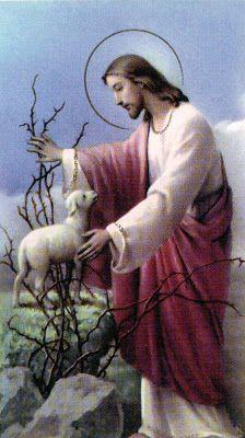 La vida es batalla espiritual: Acto de fe y confianza en el Divino Maestro Jesucristo