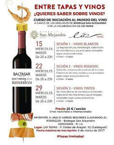 GASTRONOMÍA EN ZARAGOZA: ¡Aprende sobre vino! - Jornadas educativas. Bodega...