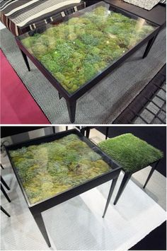 Dried moss under a glass table brings nature inside. (screened in porch table? Funky Furniture, Home Furniture, Furniture Design, Resin Furniture, Theme Design, Wood Table, Porch Table, Low Tables, Glass Table
