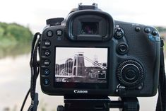 Live View: 7 Do's and 3 absolute Don'ts every photographer should remember | Digital Camera World