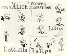 Vintage Disney Alice in Wonderland: Animation Model Sheet 350-8021 - Flower Suggestions for Daffodils, Lilies & Tulips