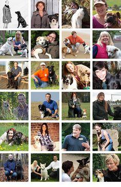 Hundetrainer und ihre Hunde – Hundeerziehung online