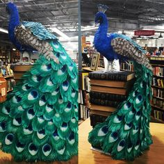 Peacock sculpture made from recycled books. See it at Half Price Books in Dallas TX