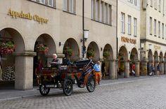 28 Gründe, niemals einen Fuß nach Münster zu setzen