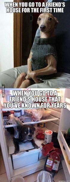 friend's houses....yep