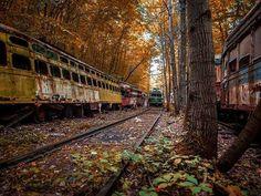 Autos que han quedado en el olvido en la Compañía Vintage Electric Streetcar, fundada en 1986, son ahora un cementerio. [Pennsylvania, EE.UU.]
