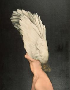 Elegantly lifted by Amy Judd  Oil on canvas
