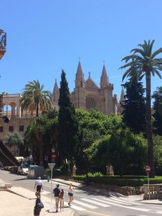 . Barcelona Cathedral, Building, Travel, Majorca, Viajes, Buildings, Destinations, Traveling, Trips