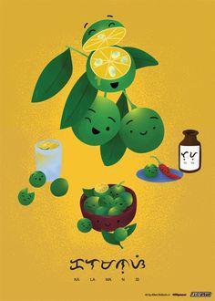 Calamansi Art Print by Filipino Food Art - X-Small Filipino Art, Filipino Food, Filipino Recipes, Calamansi, Food Packaging, Food Illustrations, Pinoy, Buy Frames, Manila