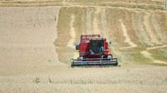 Farmer Ed Schoenberg and his son harvest oats early in attempt to salvage their drought damaged crop near Burlington, Wisconsin, on July 17, 2012