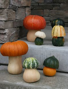Pumpkin and Gourds made to look like Toadstools- so cute!