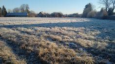 Frost-morning! Latvia