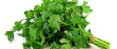 Propriedades do Chá de Salsa Para Emagrecer - http://comosefaz.eu/propriedades-do-cha-de-salsa-para-emagrecer/