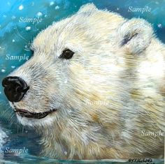 Polar Bear Le 5 50 Giclee of Painting Wildlife Snow North Winter Cub Kasheta Art | eBay