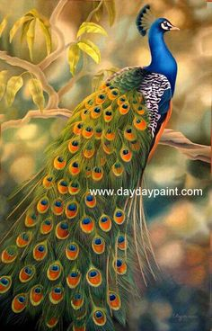 Handmade Peacock Paintings 019, 100% Hand-painted on Canvas by Outstanding Artists, Museum Quality and Affordable Price. Description from daydaypaint.com. I searched for this on bing.com/images