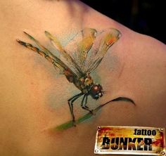 dragonfly tattoos on foot | Realistic Dragonfly Tattoo On Foot