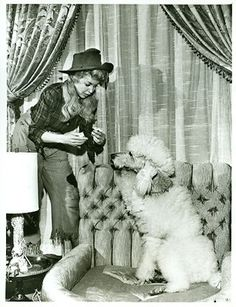 DONNA DOUGLAS TENDS TO POODLE THE BEVERLY HILLBILLIES ORIGINAL 1962
