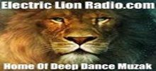 Electric Lion Radio is known for its deep dance music around the clock. The radio plays non stop music with a message. The song selection of the radio is pretty neat and their music are from Dance, jazz, house and other electrifying music type. Electric Lion Radio has created a very good number of listeners who loves to listen to this radio each day. Electric Lion Radio official website address is www.electriclionradio.com