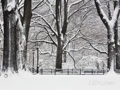 Central Park in Winter Photographic Print by Rudy Sulgan at AllPosters.com