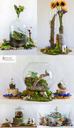 Wedding Terrarium Centerpieces