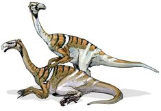 Nanshiungosaurus is a Therizinosaurid theropod from Cretaceous China. In the Media Nanshiungosaurus was originally supposed to appear in the movie Disney Dinosaur but was cut and it's concept art is shown. Disney Dinosaur, Dinosaur Games, Dinosaur Art, Dinosaur Drawing, Prehistoric Dinosaurs, Prehistoric Creatures, Dinosaur Worksheets, Math Worksheets, Learning Activities
