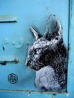 chat sphinx au crayon street art C215