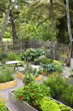 Garden Design, Planting and Gardening – Marika Delin Garden Potager Garden, Veg Garden, Vegetable Garden Design, Edible Garden, Garden Cottage, Garden Beds, Garden Paths, Plein Air, Dream Garden