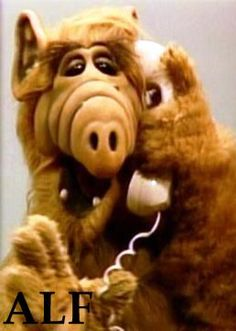No Problem> I LOVED ALF!!!!