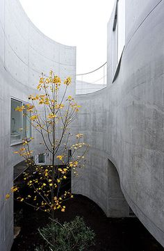 http://www.iwan.com/work/photography/Okurayama_Apartments_Sanaa/pix/SANAA-Okurayama-6760.jpg