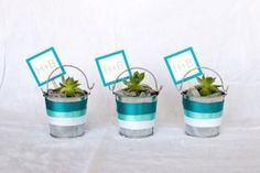 Edible food favors, wine favors, plant and succulent favors.lots of wedding favor ideas you can make yourself. Modern Wedding Favors, Wedding Party Favors, Bridal Shower Favors, Wedding Wishes, Wedding Ideas, Wine Favors, Succulent Wedding Favors, Succulents Diy, Deco Table