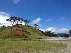 Elliot Bay NZ
