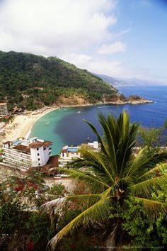 PUERTO VALLARTA, MEXICO - Vacationed there in AUG 2013... did some scuba diving at Los Arcos.  It was an epic time!