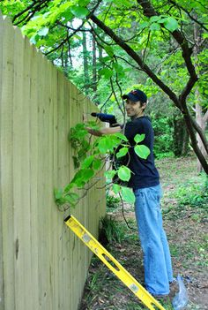 Learn How To Build A Fence (At The Last Minute)