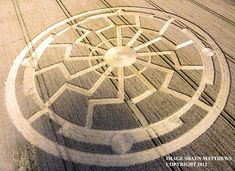 Crop Circle at Ox Drove, nr Bowerchalke, Wiltshire, United Kingdom. Reported 8th August 2015