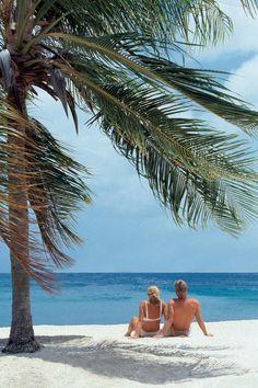 Curacao Urlaub günstig buchen (2015/2016) - Karibiksport