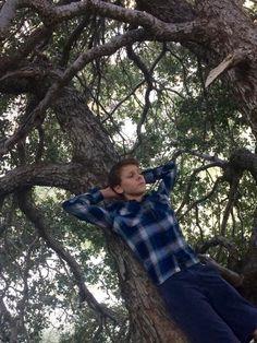 Jacob in dat tree doe Jacob Bertrand, Karate Kid Cobra Kai, Best Tv Shows, Cute Boys, Marvel, Actors, Yellow, Women, Hot