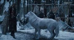 Game of Thrones - Ghost the Direwolf